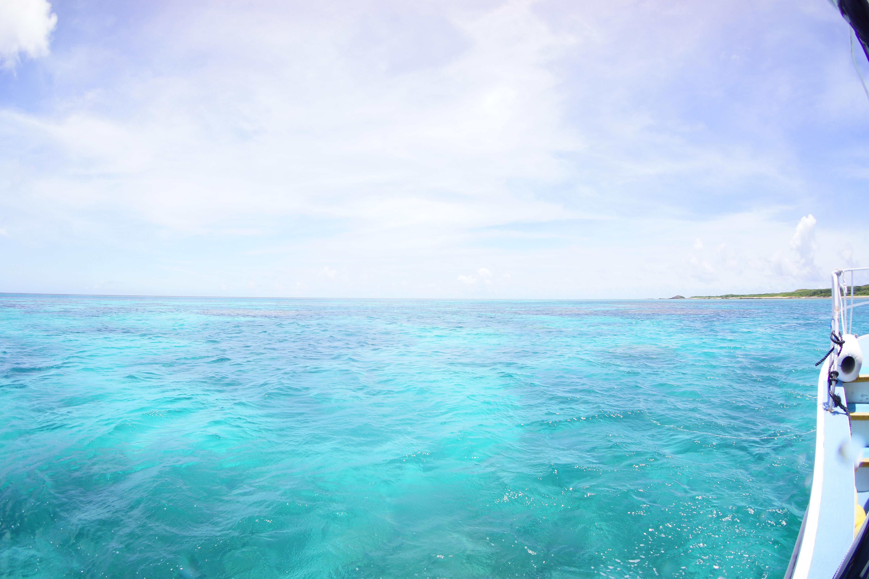 今日も美しい海