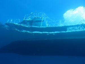 海メロの船