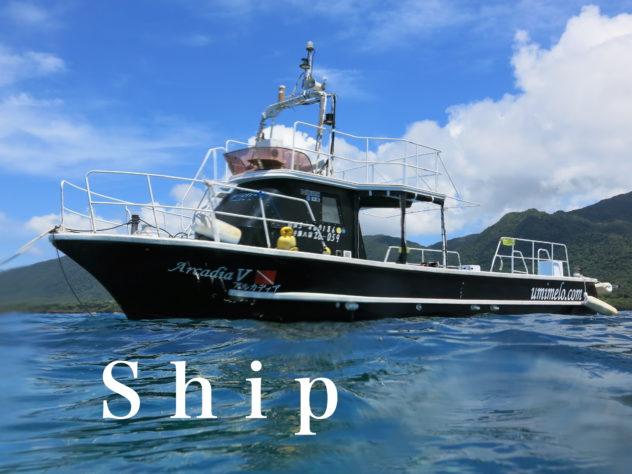 石垣島ダイビングショップ海のメロディーの船