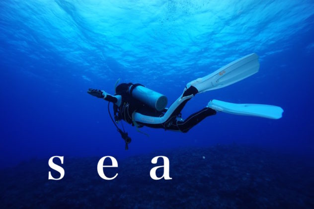 石垣島ダイビングショップ海のメロディーから行く海の様子について